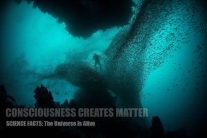Consciousness-creates-matter-reality-scientific-facts-proof-diagrm-1800