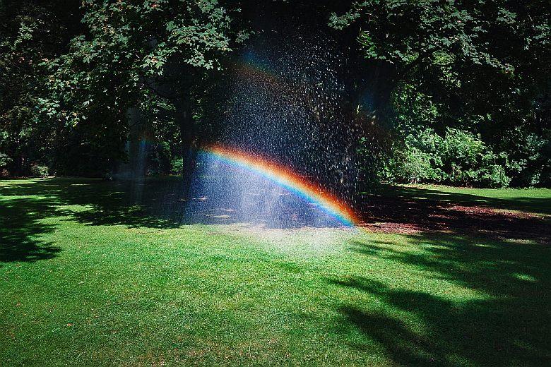 A-miracle-rainbow