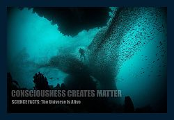 Consciousness-creates-matter-mind-creates-reality-demo-250