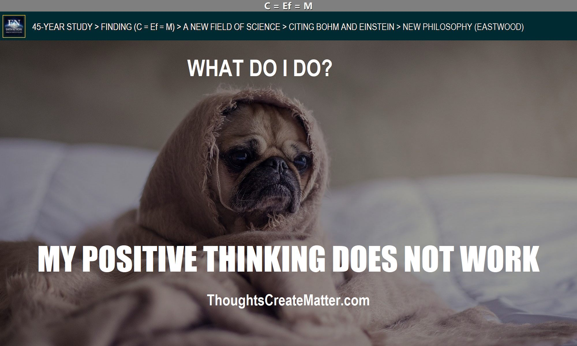 Sad dog suggests positive-thinking-doesnt-work-no-results-whats-the-solution
